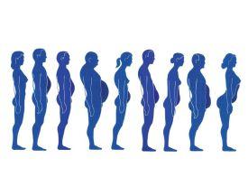 Bauch und Haltungsformen